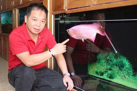 Choi ca rong 'de vuong' tram trieu van khong ngan - Anh 4