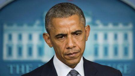 Obama phu quyet du thao ngan sach quoc phong ho tro vu khi cho Ukraine - Anh 1