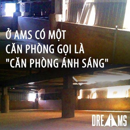 Amsers bat mi cang tin chui, lop chong truot tot nghiep - Anh 4