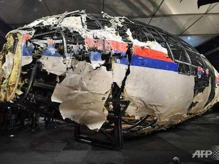 Diep vien Nga bi cao buoc danh cap du lieu cuoc dieu tra MH17 - Anh 1