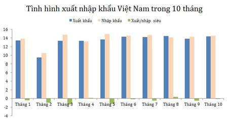 Viet Nam tiep tuc nhap sieu trong thang 10 - Anh 2