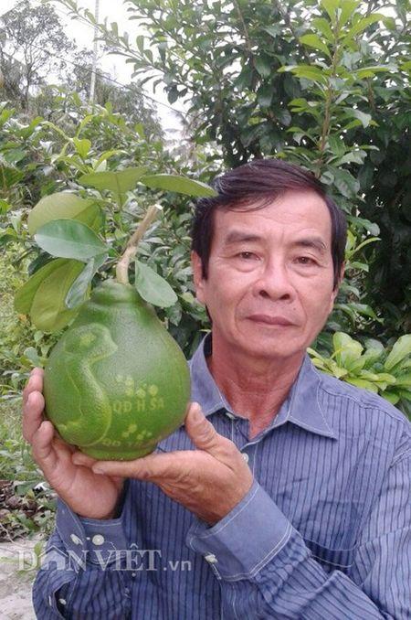 Buoi tao hinh ban do Viet Nam tien trieu duoc dat hang som - Anh 3