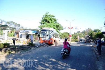 Tong taluy duong, xe giuong nam nat dau - Anh 1