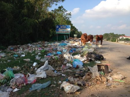 Ha Noi: Dan khon kho vi song chung voi bai rac trong khu dan cu - Anh 1