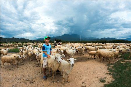 """Trai nghiem cuoc song du muc tai """"xu cuu"""" Ninh Thuan - Anh 3"""