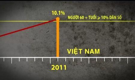 Dan so Viet Nam dang gia hoa - Anh 2