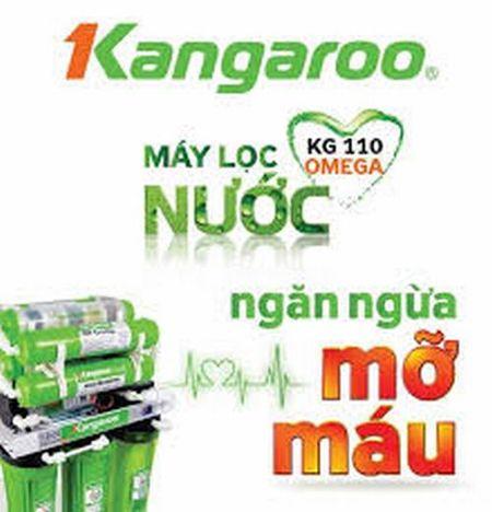 Hau het san pham Kangaroo co nguon goc Trung Quoc - Anh 2