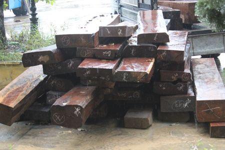 Quang Tri: Lai phat hien go lim xanh vo chu o khu vuc bien gioi - Anh 2