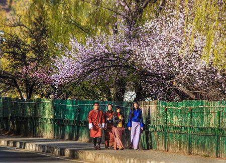 Nhung khoanh khac tuyet dep o xu so co tich Bhutan - Anh 10