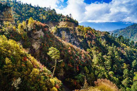 Nhung khoanh khac tuyet dep o xu so co tich Bhutan - Anh 12