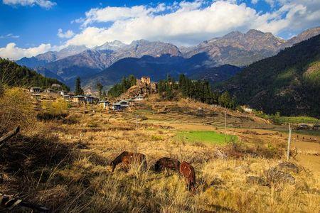 Nhung khoanh khac tuyet dep o xu so co tich Bhutan - Anh 13