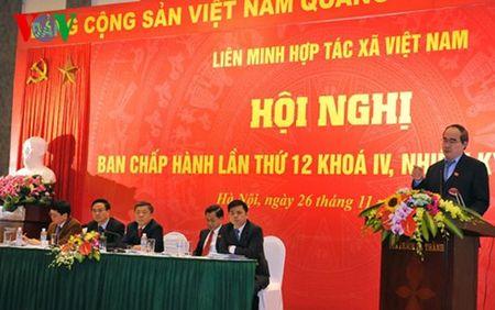 Cuu Bi thu Ha Tinh giu chuc Chu tich Lien minh Hop tac xa - Anh 2