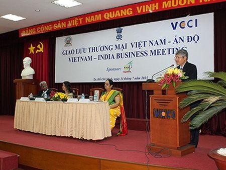 Nhieu doanh nghiep An Do muon tim hieu thi truong Viet Nam - Anh 1