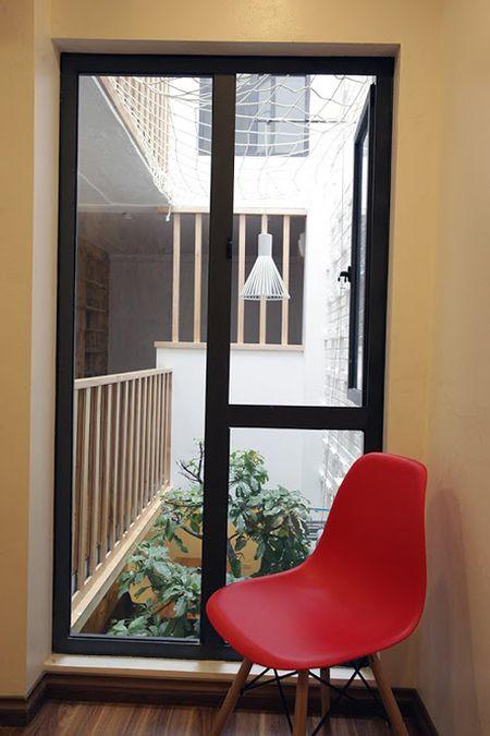 Trong cay to giua long nha ong 45 m2 o Ha Noi - Anh 5