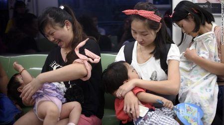 "Buc anh cho con bu tren tau dien ngam gay ""bao"" tren mang xa hoi Trung Quoc - Anh 2"