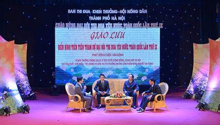 Van dong nong dan Ha Noi san xuat, tieu thu san pham nong nghiep an toan - Anh 1