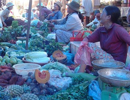 Quang Ngai: So ket 4 nam quan ly vat tu nong nghiep - Anh 1
