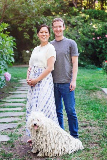 Vua len chuc bo, ong chu Facebook tuyen bo tang 99% khoi tai san kech su - Anh 2