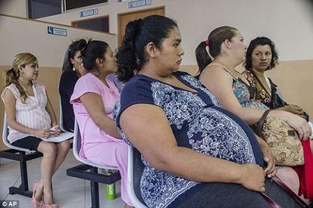 Thai phu nhiem virus Zika duoc cap phat thuoc pha thai mien phi - Anh 1