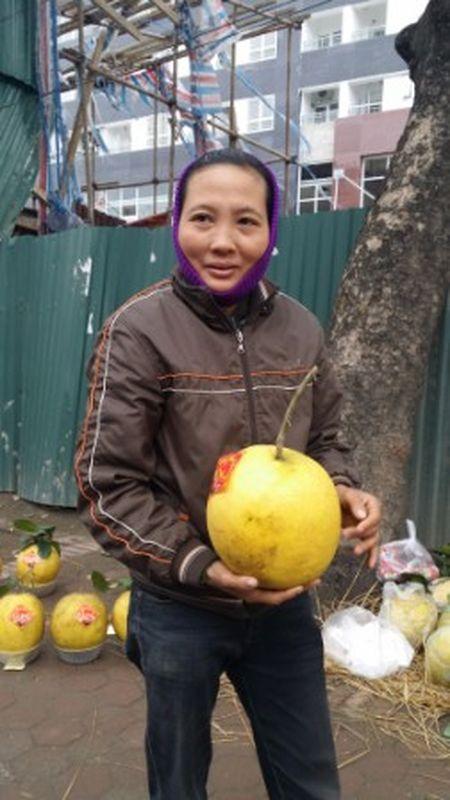 Su that buoi tho Ky Da 5kg ban tien trieu o via he - Anh 2