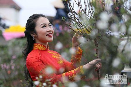 Cho hoa Hang Luoc vao xuan - Anh 3