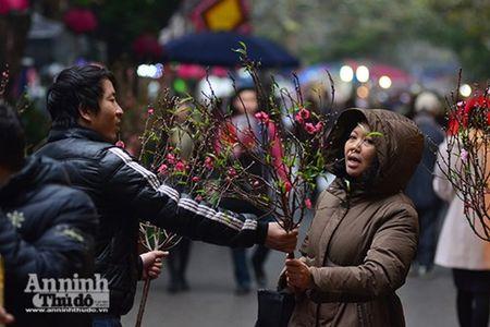 Cho hoa Hang Luoc vao xuan - Anh 5