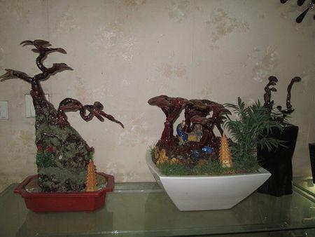 Nhieu nguoi khong tiec tien sam linh chi bonsai chuc trieu choi Tet - Anh 4