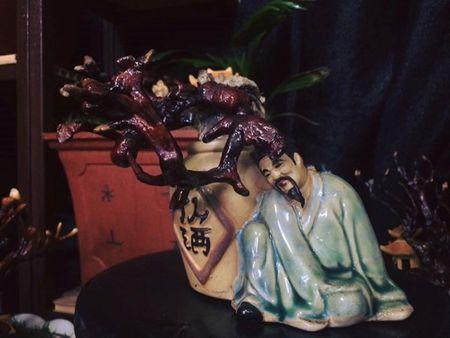 Nhieu nguoi khong tiec tien sam linh chi bonsai chuc trieu choi Tet - Anh 6