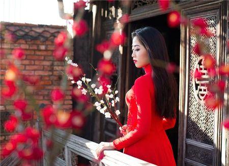 "MC Ha Trinh: ""Toi thay minh ""giau co"" hon trong nam qua"" - Anh 2"