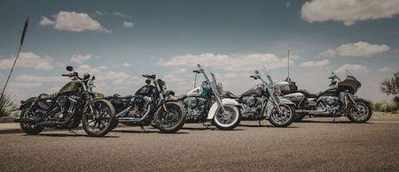 Harley-Davidson doi mat voi su sut giam doanh so - Anh 2