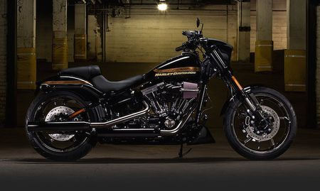 Harley-Davidson doi mat voi su sut giam doanh so - Anh 3