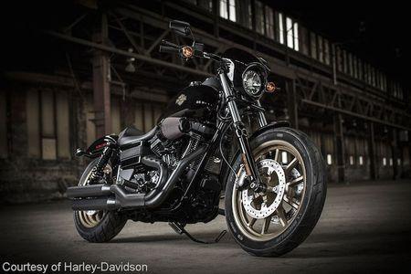 Harley-Davidson doi mat voi su sut giam doanh so - Anh 5