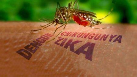 'Virus Zika' moi de doa khong chi rieng Viet Nam ma cua toan cau - Anh 1