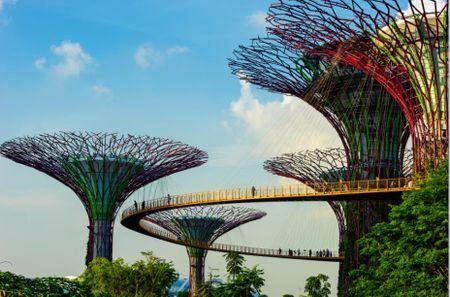 4 trai nghiem du xuan danh cho cap doi tai Singapore - Anh 2