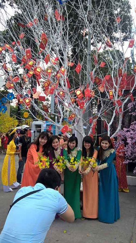 1 van loi chuc gui 'Cay dieu uoc' Tet Binh Than - Anh 4