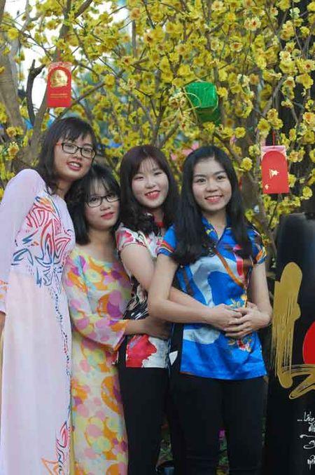 1 van loi chuc gui 'Cay dieu uoc' Tet Binh Than - Anh 6