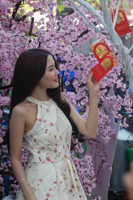 1 van loi chuc gui 'Cay dieu uoc' Tet Binh Than - Anh 7