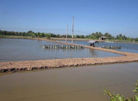 No am dang ve voi dong bao Khmer - Anh 4