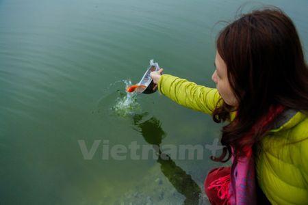 Tet Nguyen dan - Le hoi co truyen lon, lau doi nhat ca nuoc - Anh 2