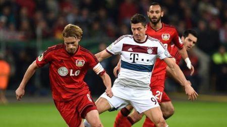 Vong 20 Bundesliga: Dortmund va Bayern cung hoa - Anh 1