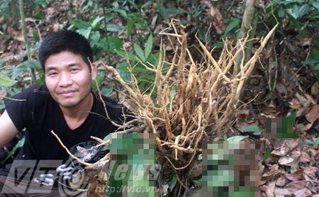 Nhung cau chuyen buon chua biet ve sam quy o Viet Nam - Anh 10