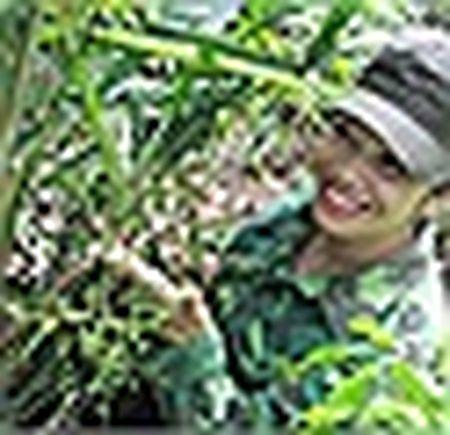 Nhung cau chuyen buon chua biet ve sam quy o Viet Nam - Anh 6
