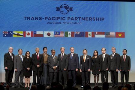 Ngan hang se theo 'luat choi' moi gi khi gia nhap TPP? - Anh 1