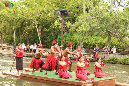 Hap dan va thu vi van hoa Polynesia - Anh 10
