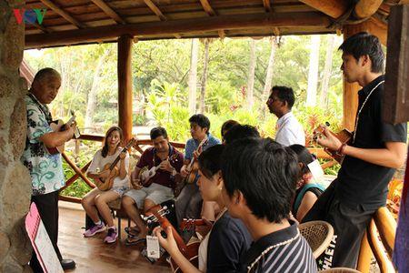 Hap dan va thu vi van hoa Polynesia - Anh 16