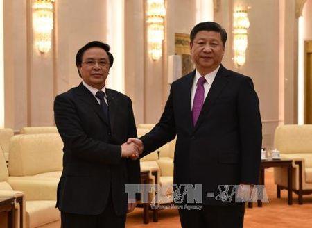 Chu tich Trung Quoc tiep dac phai vien cua Tong Bi thu Nguyen Phu Trong - Anh 1