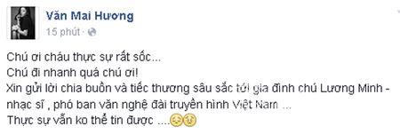 Sao Viet khoc thuong truoc su ra di dot ngot cua nhac si Luong Minh - Anh 1