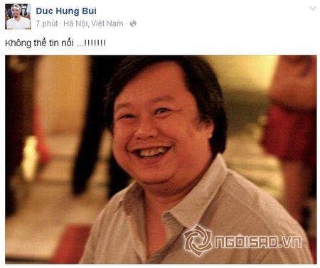Sao Viet khoc thuong truoc su ra di dot ngot cua nhac si Luong Minh - Anh 2