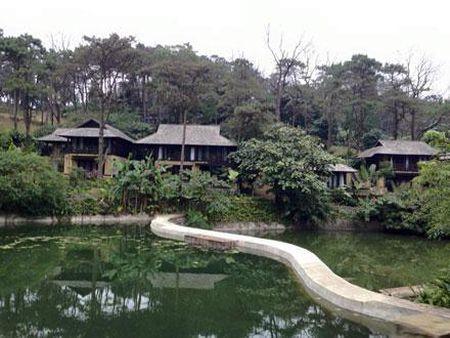 Resort giua vuon quoc gia Ba Vi: Nhung chi dao nong - Anh 2