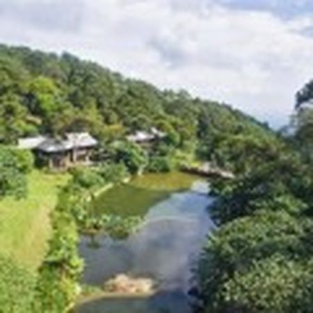 Vu xay resort khong phep giua Vuon Quoc gia Ba Vi: Chu dau tu thua nhan sai sot - Anh 5